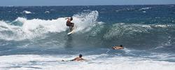 Kawa Surfers